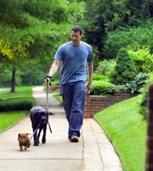 Fun with Fido: Tips for an active summer with your dog