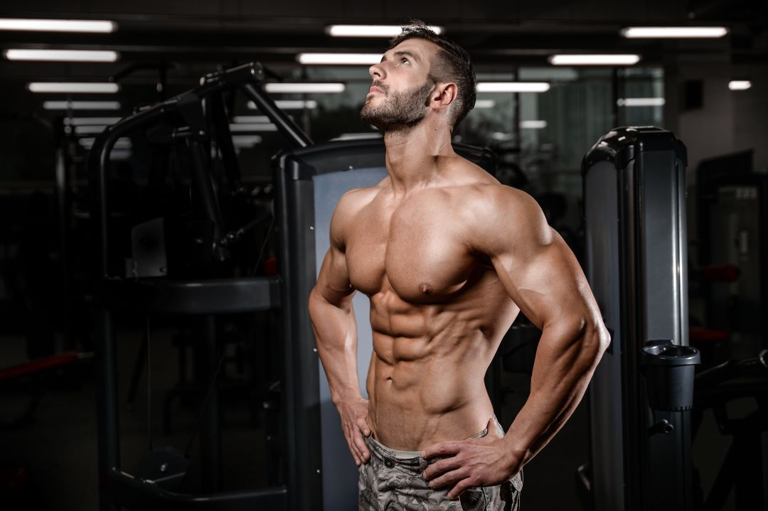 Fit Male